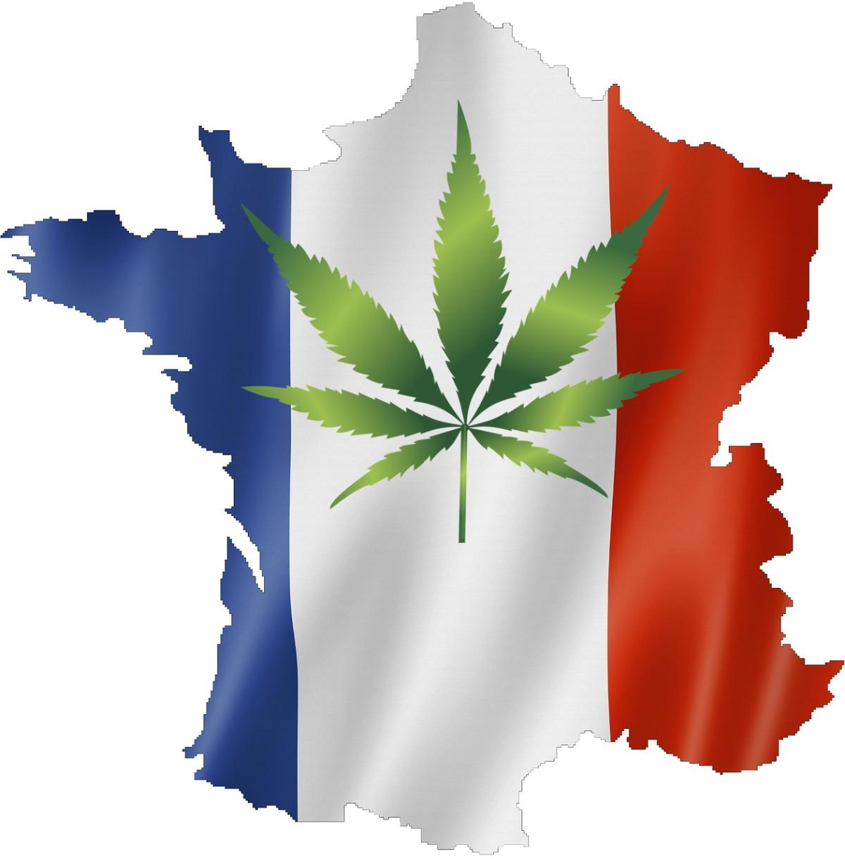 Pourquoi faut-il légaliser le cannabis en France?